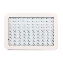 300W Led Grow Light Full Spectrum Fitol&a Led Plant Grow L& 380-840nm for Greenhouse Plant Flowering Grow Tent Indoor Plant  sc 1 st  DHgate.com & Indoor Greenhouse Tent NZ | Buy New Indoor Greenhouse Tent Online ...