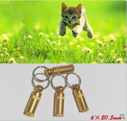Comportement Formation Chien Chat Mini ID TAG Anti Perdu Nom Étiquette D'adresse Identité Barrel Tube Collar en Solde