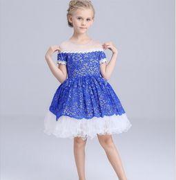 $enCountryForm.capitalKeyWord Canada - Baby Girls Dress Spring Summer Costume Girls Mesh Lace Princess Dress Children Ball Gown Blue Dress Kids A Word Shoulder Dress