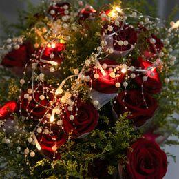$enCountryForm.capitalKeyWord Canada - Pearl Led String Light, 1M 2M 3M 4M Garland Led Fairy Lights with 20 LED Bulbs, Romantic Wedding Bride Cake Decor Lights