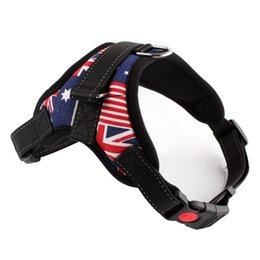 $enCountryForm.capitalKeyWord Canada - Large dog dog traction rope chest strap Labrador pet supplies pet chest strap 14B01C
