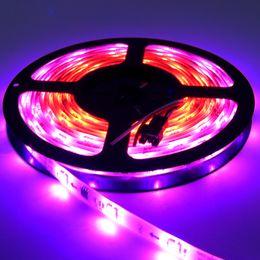 Light Strip Color Australia - 5M 30leds m 5050 WS2811 led strip light 10pcs ws2811 ic chip per meter 12V White PCB 2811 led strip full color Addressable Digital LED Light