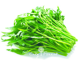 Водяной шпинат Овощ 500 Семена / мешок легко вырастать из семян Цветочная реликвия Семена очень вкусного