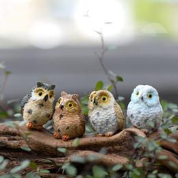 Discount miniature fairy garden accessories wholesale - 4 style Micro Mini Fairy Garden Miniatures Figurines Owl Birds Animal Action Figure Toys Ornament Terrarium Accessories