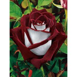 $enCountryForm.capitalKeyWord Canada - Factory Wholesale Low price Diy Diamond Painting home decor Red white rose Rhinestone Wall Sticker room 30X40CM HWC-514