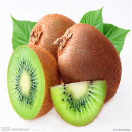 kiwi fruit seeds 2019 - The Kiwi fruit seeds Nutritious and Delicious Fruit Seeds DIY Home Bonsai Tree 50 Particles   lot H023 discount kiwi fru