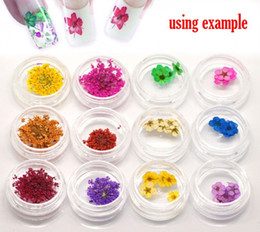 Types nail art designs online types nail art designs for sale dorabeads organic nail products 12 types real dried flower for nail art decoration tips design 9x9mm 21x22mm1 box pack prinsesfo Gallery