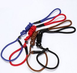 Medium Dog Collars Leashes Canada - High Quality Nylon Materia Dog Training Collar Leash Pet Lead Rope Dog Harness Pet Supplier 4 Color 3 Size 10PCS LOT