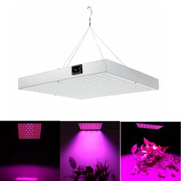 plug flower led lights 2020 - 2016 New EU UK US plug 14W 225LEDs 85-265V SMD3528 LED Grow Light Lamp Hanging Vegetable Flower Greenhouse Garden Indoor