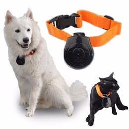 Freeshipping Brand New Mini Caméra Animal de Compagnie Chien Chat LCD Caméra Vidéo Enregistreur Produits pour Animaux Accessoires de Collier