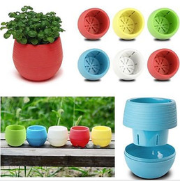 Gardening Plastic Pots Canada - Gardening Flower Pots Small Mini Colorful Plastic Nursery Flower Planter Pots Home Office Desktop Garden Deco Garden Pots Gardening Tool