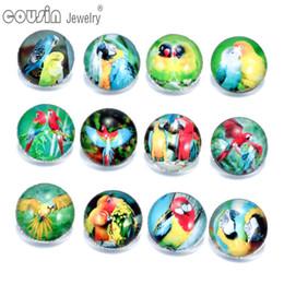 Discount parrot bracelets - 12pcs lot Mixed Colors Parrot 18mm snap button Jewelry Faceted glass Snap Fit snap Bracelet Jewelry KZ0131