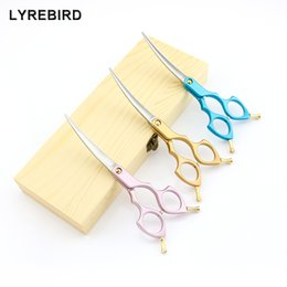 Wholesale Lyrebird TOP CLASS pet Cosmetic Scissors 6 Inch Curved Scissors Pink Golden or Blue Handle Japan 440C High quality NEW