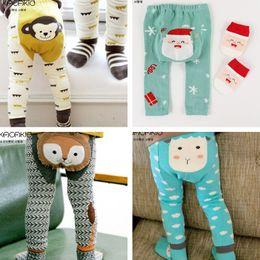 Pantaloni collant pantaloni per bambini leggings pantaloni ragazzi ragazze vestiti per neonati 10 abbigliamento colore cute cartoon leggings calzini due set 1553 in Offerta