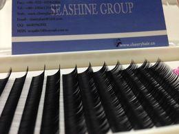 $enCountryForm.capitalKeyWord Canada - 6 trays Individual eye Lash Extensions 0.15 B C Curl High Quality Factory Price Lash Extensions 8 9 10 11 12mm