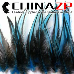 $enCountryForm.capitalKeyWord NZ - Yiwu ZP Crafts CO., Ltd 50pcs lot Cheap Wholesale Blue Dyed Rooster Pointy Laced Cape Feathers for Cloth Accessories