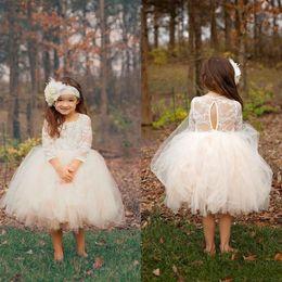 $enCountryForm.capitalKeyWord Australia - 2018 Boho Ball Gown Puffy Cupcake Short Toddler Flower Girls Dresses Sheer 3 4 Sleeves Knee Length Tulle Birthday Pageant Communion Gowns