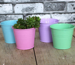 Wholesale Metal Iron Bucket Flower Pots Planting Pot Flower Pot Gardening Pots Plant Flowerpot Succulents Container OOA1573