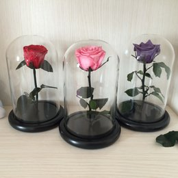 rose preserved 2019 - Wholesale-The Little Prince Glass Cover Fresh Preserved Rose Flower Immortal Colorful Roses for Girl Valentine's Da