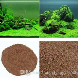 Acquario Glossostigma Hemianthus Callitrichoides Semi Acqua Erba Mini Leaf Live Plant Fish Tank Decorazione Ornamento di paesaggio