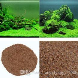 """Aquarium Glossostigma Hemianthus Callitrichoides Seeds Water Grass Mini Leaf Live Plant Fish Tank Decoration Landscape Ornament on Sale"