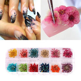 Discount small flower nail art 2017 small flower nail art on 2017 small flower nail art 12 colors real nail dried flowers nail art decoration diy tips prinsesfo Gallery
