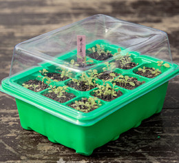 $enCountryForm.capitalKeyWord NZ - 20SET Seed Trays Plant Germination Kit Grow Starting Durable Plastic with Humidity Dome and Base 60 Cells All, Koram Plant Tags