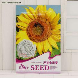 $enCountryForm.capitalKeyWord Canada - Garden Decoration Bonsai Toothpick Edible Sunflower Seeds Annual Herbs DIY Home Garden 20 Particles