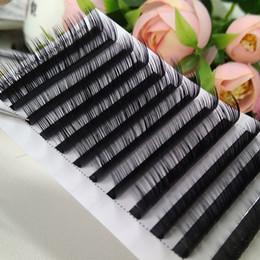Venta al por mayor de 0.03 0.15 Principales pestañas individuales de Corea Todos los tamaños Extensiones de pestañas por volumen Lash L C D Nuevo Lash Seashine para pestañas profesionales