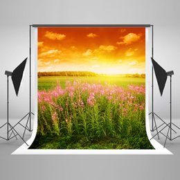 paint muslin backdrop Canada - 5x7ft(150x220cm) Wrinkles Free Photography Background Sunset Natural Photo Backdrop Pink Flowers Backdrops for Wedding Backgrounds Seamless