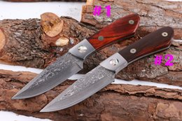 $enCountryForm.capitalKeyWord Canada - New 2 Style Damascus Fixed Blade Hunting Knife Natural Rosewood Handle Outdoor Survival Straight Knife With Genuine Leather Sheath