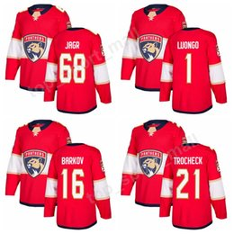 fb33c3b81 Florida Panthers 68 Jaromir Jagr Jerseys Men Custom Ice Hockey 1 Roberto  Luongo 16 Aleksander Barkov 21 Vincent Trocheck Jersey