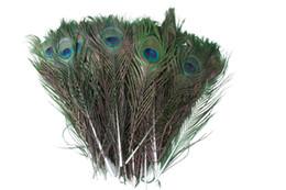 25 -30 CM Genuino Pluma de Pavo Real Natural Elegante Ropa Decoración Plumaje Artesanías de La Manera Hermosa Decorativa libre de DHL en venta
