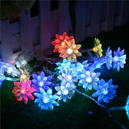 Wholesale 110V 220V 5m 20 Bulbs Fairy LED String Lights Garland Lotus  Christmas Lights Outdoor