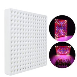 $enCountryForm.capitalKeyWord UK - 50W LED Hanging Grow Lights 225 LED Full Spectrum LED Plant Grow Light for Indoor Plant Garden Greenhouse Hydroponic Growing with Hang Rope