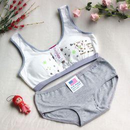 6e3be0a2ae 2017 Fashion Cartoon Young Kids Underwear Student Bra Set Teenage Bra for Girls  Young Girls Cotton Training Bra Children Underwear
