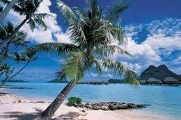 bora bora island poster print palm trees beach paradise art silk poster home wall poster