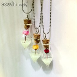 $enCountryForm.capitalKeyWord Canada - New Arrival 30pcs lot multi styles drifting bottle charm pendant necklace with noctilucence glass bottle Cousin Jewelry DZ0185