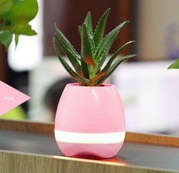Flower Pots For Indoor Plants Online | Flower Pots For Indoor ...