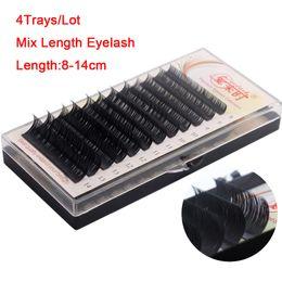 $enCountryForm.capitalKeyWord Canada - Newcome 4case lot,12rows case,mix Length eyelash 8-14cm 3d extension individual eye lashes makeup tools