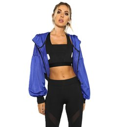 China Casual Blue Women Hollow Out Short Jacket Lady Coats Front Zipper Long Puff Sleeve Brief Outwears Streetwear supplier lady jacket puff sleeves suppliers