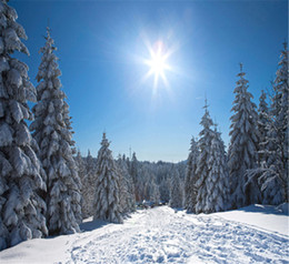 Printed backdroPs for PhotograPhy online shopping - Sunny Blue Sky Winter Backdrops for Photography Thick White Snow Covered Pine Trees Ski Slope Christmas Holiday Kids Photo Booth Background