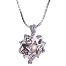 $enCountryForm.capitalKeyWord NZ - 18kgb Shine Star Pearl Cage Pendants Oyster Lockets For DIY Wish Love Pearl Pendant Necklace Jewelry Good Gift Women