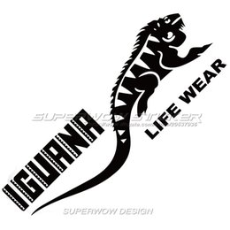 Car Decals Lizard Online Car Decals Lizard For Sale - Custom car decals online   how to personalize