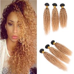 brazilian kinky curly hair weave ombre 2019 - two tone 1b 27 honey blonde dark root ombre bralian afro kinky curly virgin human hair weave weft extensions 3 bundles l