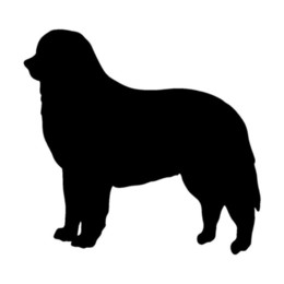 $enCountryForm.capitalKeyWord UK - 13.5*12.7CM Bernese Mountain Dog Car Cover Scratch Decorative Decal Lovely Cartoon Animal Stickers