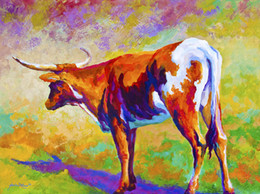 Giclee Art Canada - YOU ME ART oil painting Hot Sell 100% Modern Giclee Wall Artwork Squat Home Decoration Art Prints on Canvas Fine Art texas longhorn