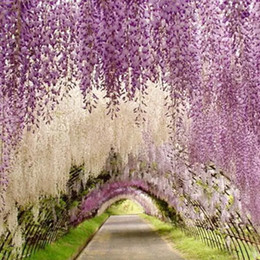 Discount wisteria for wedding decoration 2018 wisteria for wedding decoration 110 cm long artificial flower decorative silk elegant wisteria vine rattan for decor party christmas festive supplies wisteria for junglespirit Gallery