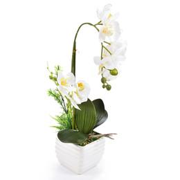Home & Garden Energetic Hi-q 11pcs Phalaenopsis Artificial Flower 78cm 7heads Silk Fake Flower Decoration For Wedding Home Hotel Party Garden Decor