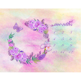 painting pastels Canada - Digital Painted Watercolor Pastel Pink Baby Background Floral Wreath Purple Flowers Butterfly Calendar Photography Backdrop for Newborn